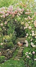 o-jardim-baralho-cigano