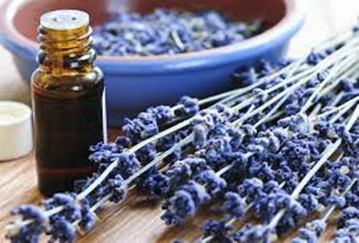 Aromaterapia saiba mais
